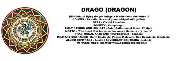 Palio Drago Pattern