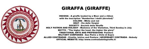 Palio Giraffa Pattern