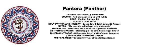 Palio Pantera Pattern